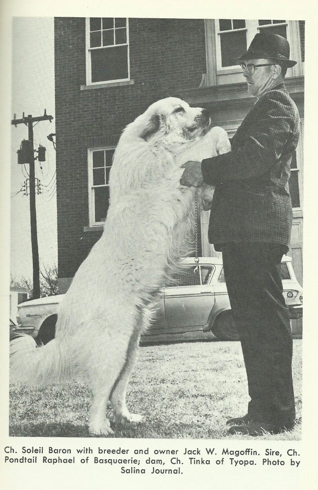 From 'How to Raise and Train a Great Pyrenees' by Edith K. Smith1964 by TFH Publications Inc