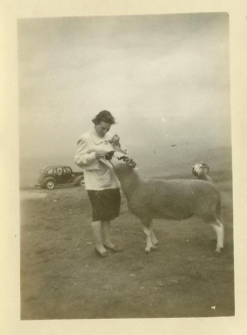 Unknown Photograph from photo album Bridlington 1938