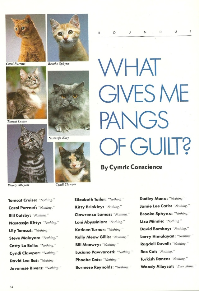 What Gives Me Pangs of Guilt from Catmopolitan by Ilene Hockberg (c) Ilene Roseenthal Hockberg 1987