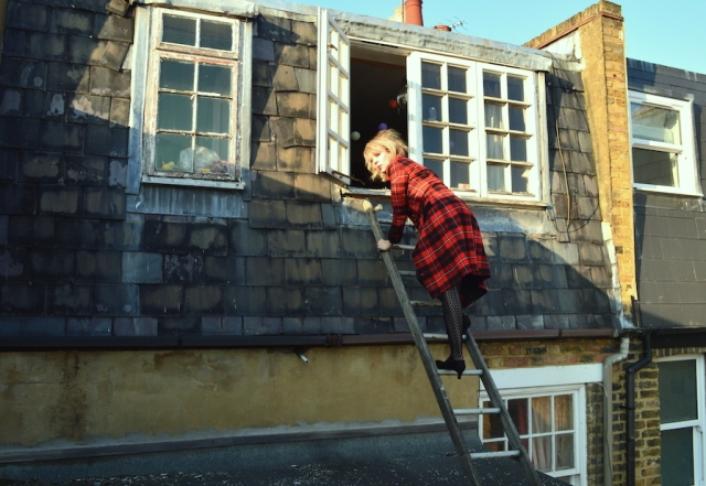 Lettie has been trying to escape for years and now doesn't want to -on the roof for the last time probably February 2017
