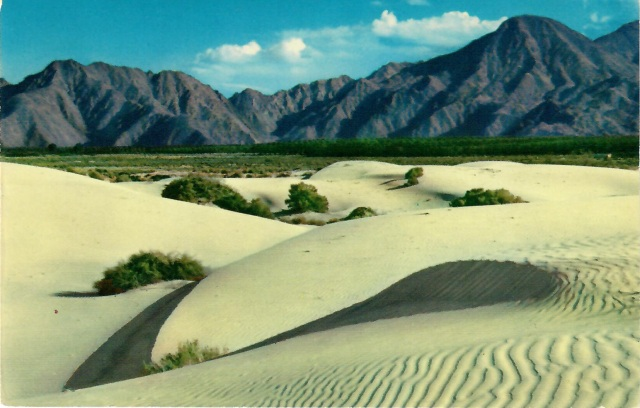 Southern California Sand Dunes color photo by Fred Clatworthy published Ferris H Scott, Santa Ana Calif