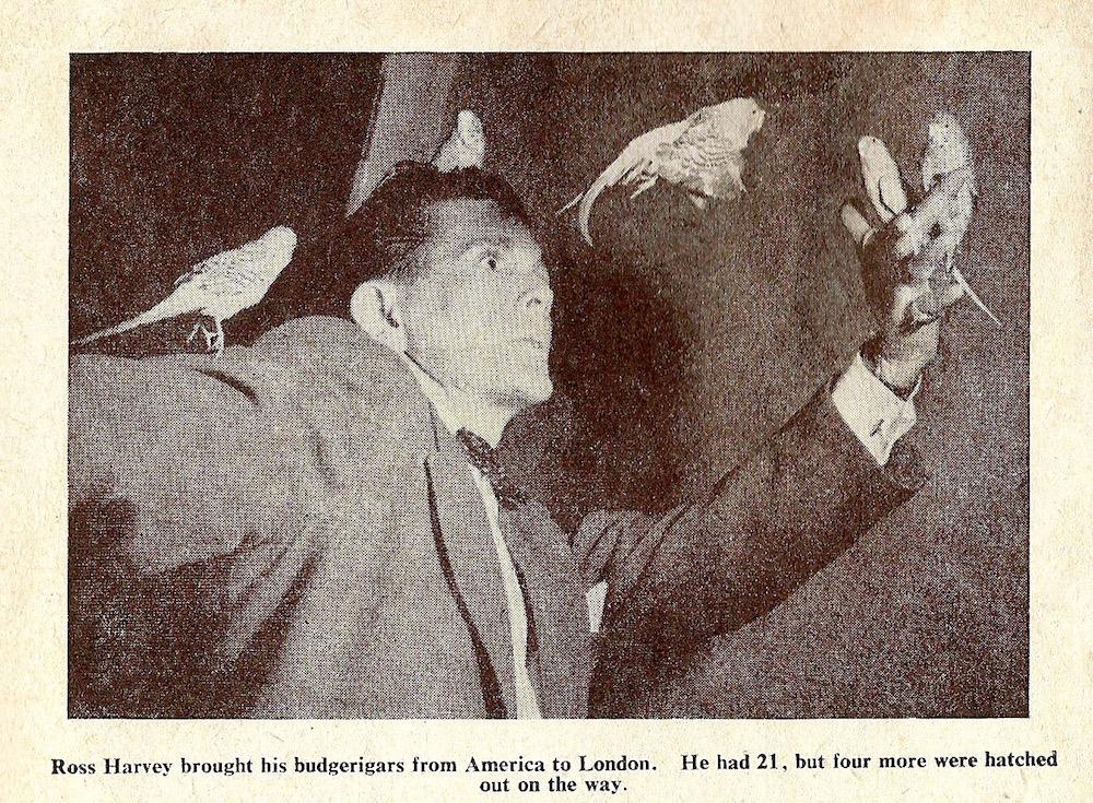 Inside cover of London Life Magazine 1952