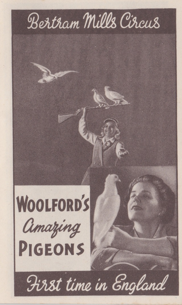 Bertram Mills Circus Dec 17 1948 Woolford's Amazing Pigeons