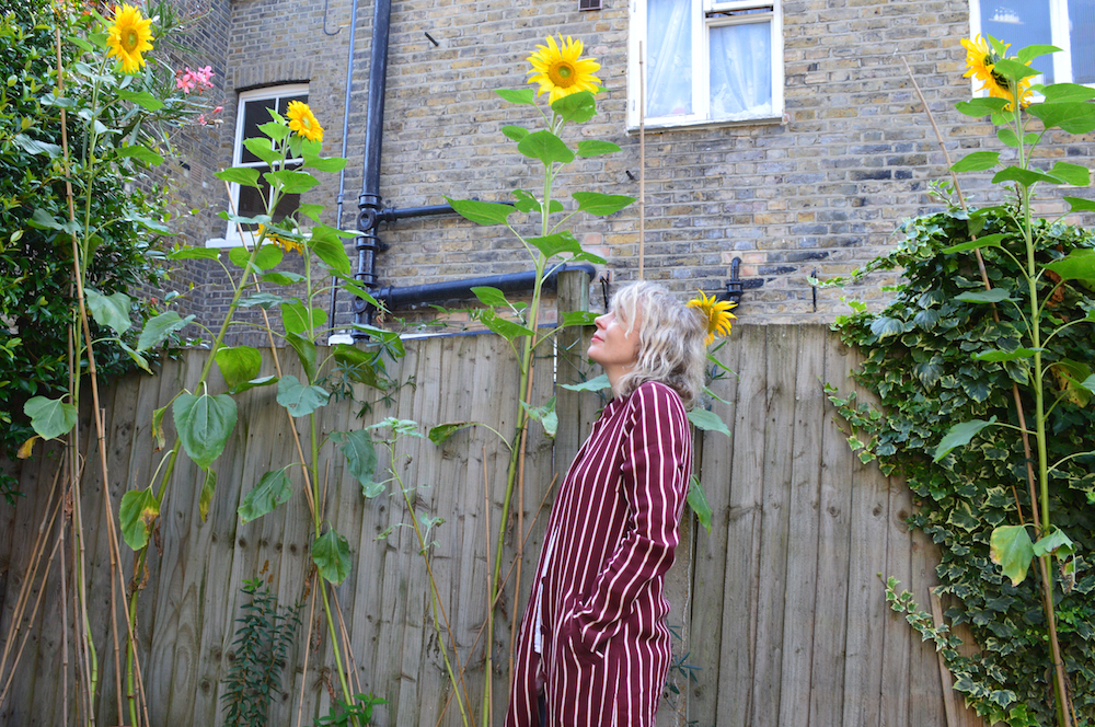Last year Lettie with her sunflowers August 2019